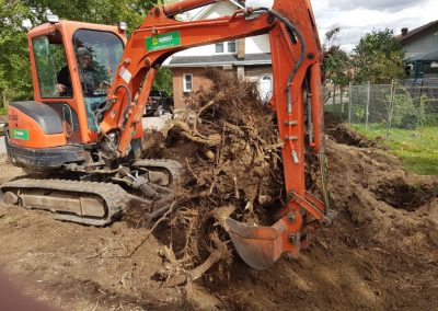 machine digging up large tree stump