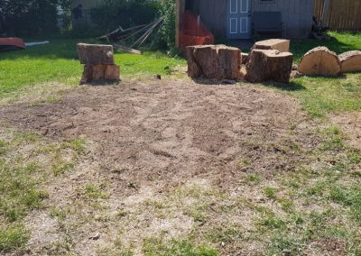large tree stumps that have been removed in residential yard